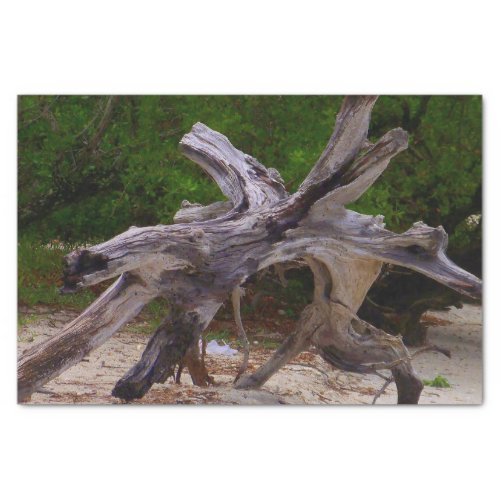 Driftwood Tissue Paper