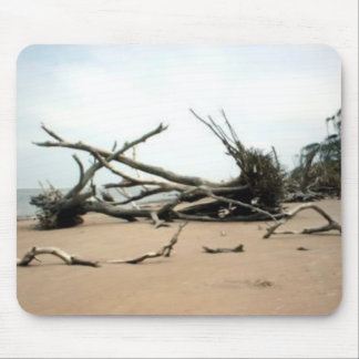 Driftwood Trees at Talbot Island Mouse Pad