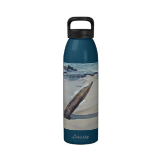 Driftwood Unchained Water Bottle