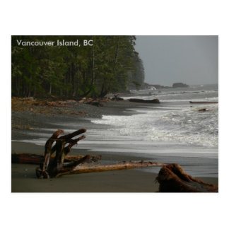 Driftwood Vancouver Island, BC Postcard