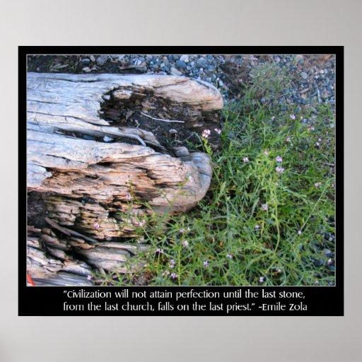 Driftwood y cita de Zola Póster