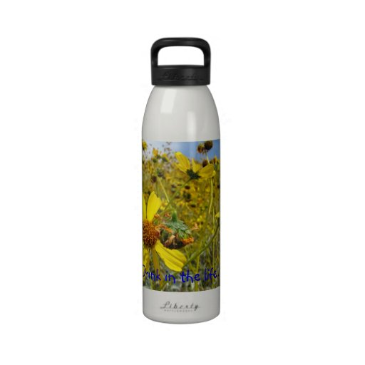 Drink in the life! Wild daisies water bottle