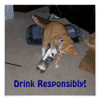 Drink Responsibly! Poster