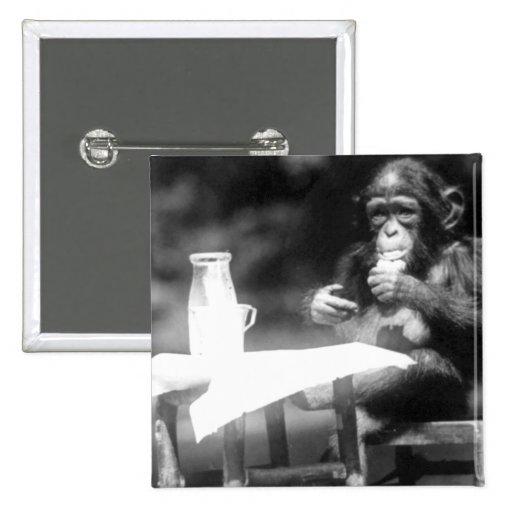 Drinking Chimpanzee Vintage National Zoo Pin