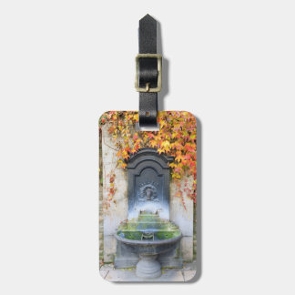 Drinking fountain in fall, Hungary Bag Tag