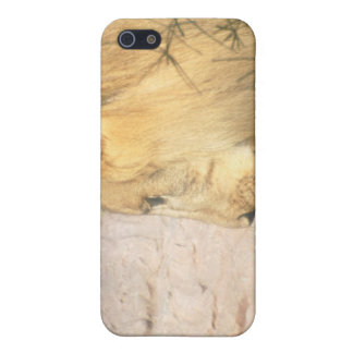 Drinking Lion iPhone Case iPhone 5 Covers