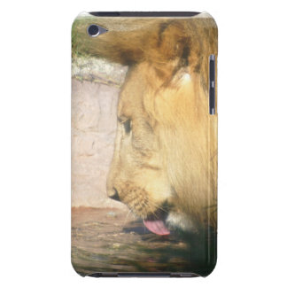 Drinking Lion iTouch Case iPod Touch Case