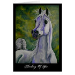 """Drinking the Wind"" Arabian horse card"