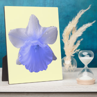 Dripping Daffodil Blue Plaque