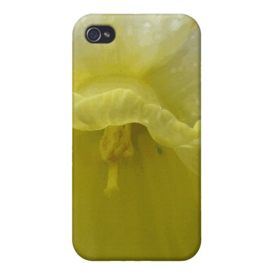 Dripping Daffodil Flower  iPhone 4/4S Covers