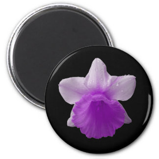 Dripping Daffodil Purple Magnet