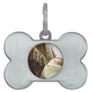 Dripping Gum Gnome Pet Tag