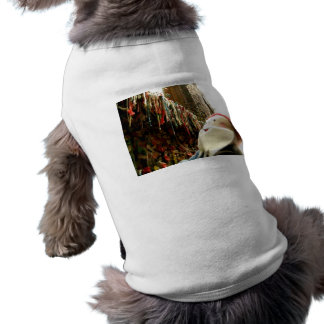 Dripping Gum Gnome Shirt