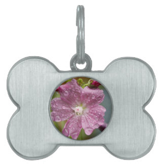 Dripping Wet Flower Pet Name Tag
