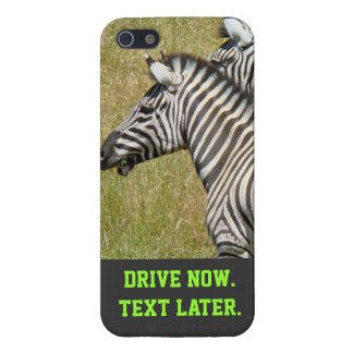 Drive Now Text Later iPhone 5 cases Zebras Safety