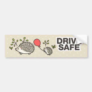 Drive Safe! Car Bumper Sticker