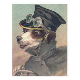 """Driver Dog"" Vintage Illustration Postcard"