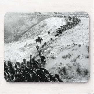 Driving cattle in the winter. mouse pad