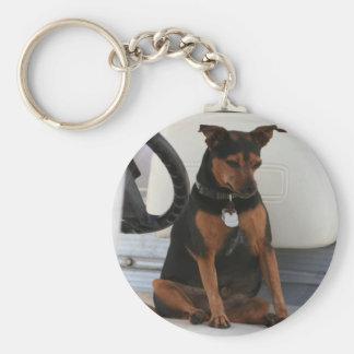 Driving Dog keychain
