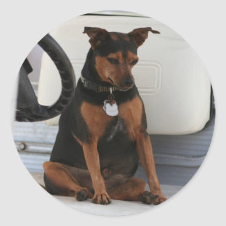 Driving Dog sticker