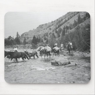 Driving pack mules across a river mousepads