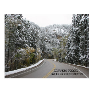 DRIVING THREW SPEARFISH CANYON - Customized Post Card
