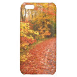 Driving through fall cover for iPhone 5C