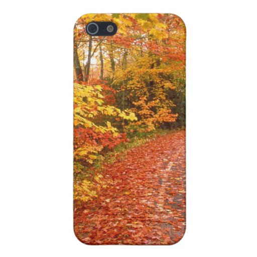 Driving through fall covers for iPhone 5
