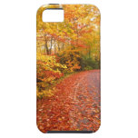 Driving through fall iPhone 5 case