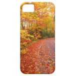 Driving through fall iPhone 5 covers