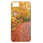 Driving through fall iPhone 5C covers