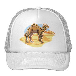 Dromedary Camel Hats