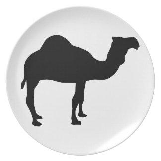 Dromedary camel plate