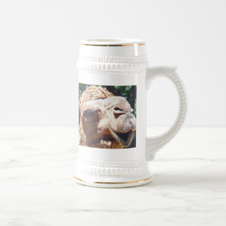Dromedary One Hump Camel Face Closeup Mugs