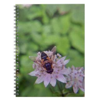 Drone Flower Version 1 Notebooks