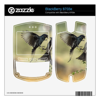 Drongo Birds Love BlackBerry Skin