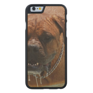 Drooling Bordeaux Mastiff Carved® Maple iPhone 6 Case