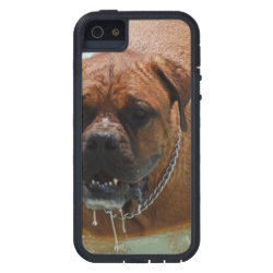 Drooling Bordeaux Mastiff Case For iPhone SE/5/5s
