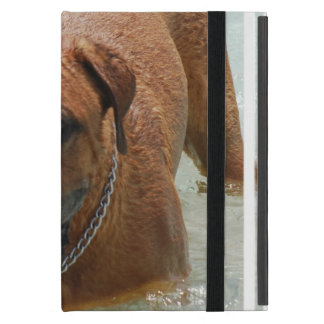 Drooling Bordeaux Mastiff Cover For iPad Mini