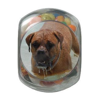 Drooling Bordeaux Mastiff Glass Jars