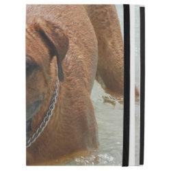 iPad Pro Powis Case with Mastiff Phone Cases design