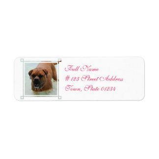 Drooling Bordeaux Mastiff Label