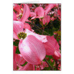Drooping Dog Blossom Greeting Card