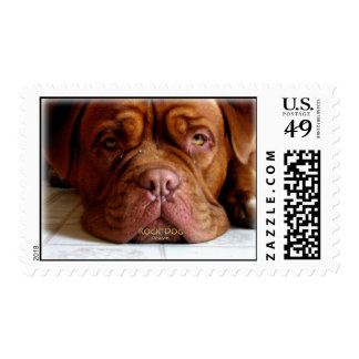 Droopy Dogue - Postage Stamps