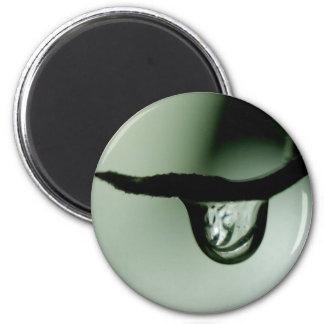 Drop 2 Inch Round Magnet
