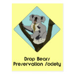 Drop Bears Preservation Society Post Cards