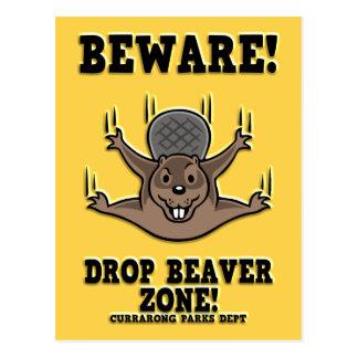 drop-beaver-DKT Postcard