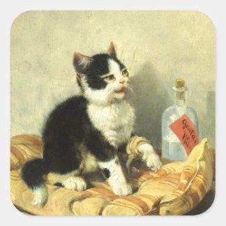 Drop cat square sticker