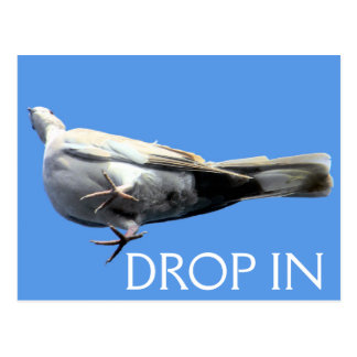Drop In Postcard - SRF