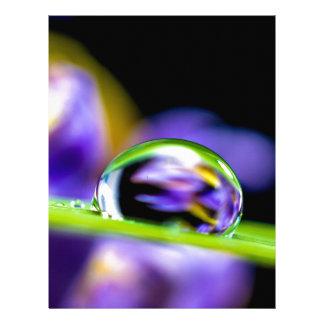 Drop of water letterhead